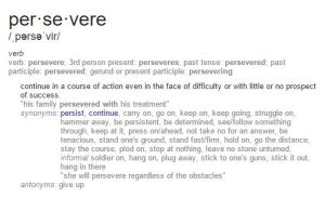 Persevere Definition
